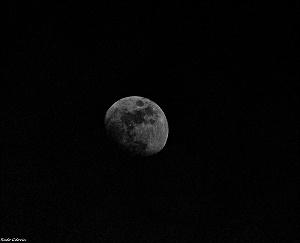 dark.side.moon.opt